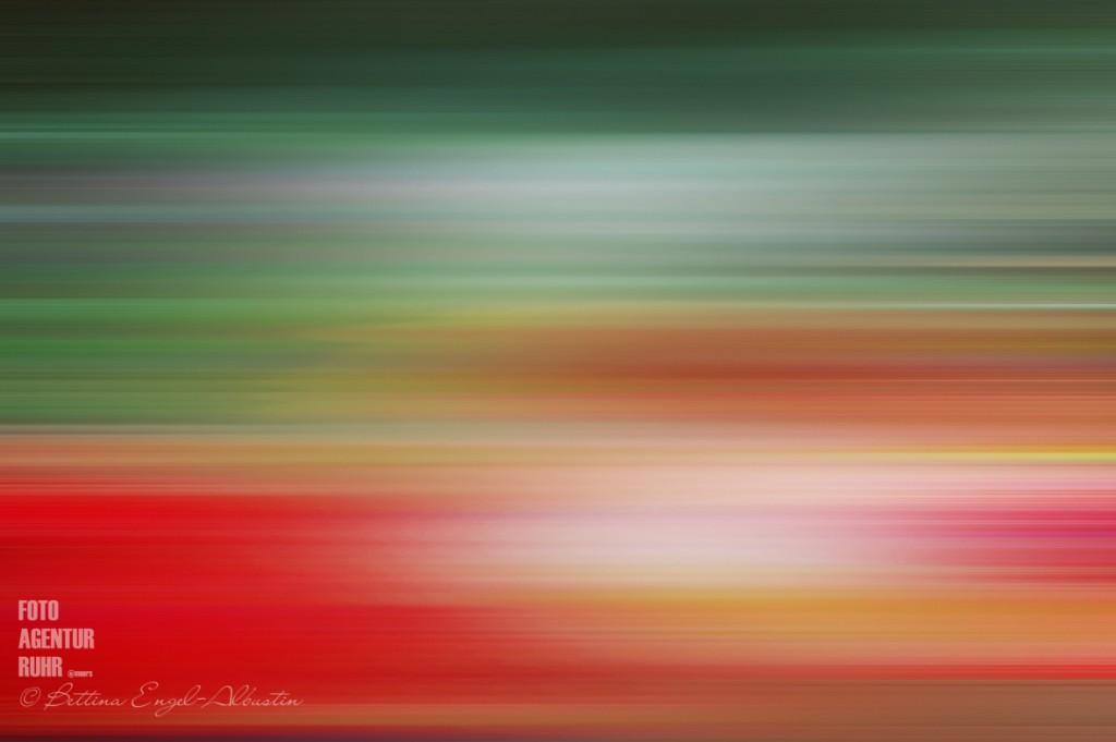 Bettina Engel-Albustin / fotoagentur ruhr moers